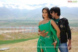 Hot Poses of Ravi Teja-Anushka from Baladoor
